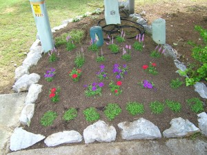 New flower bed is new