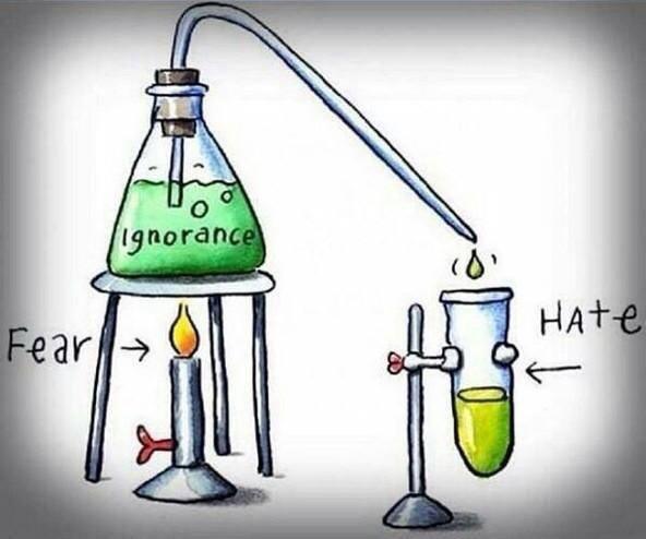 Fear Ignorance Hate